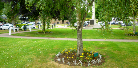 Harpenden in bloom