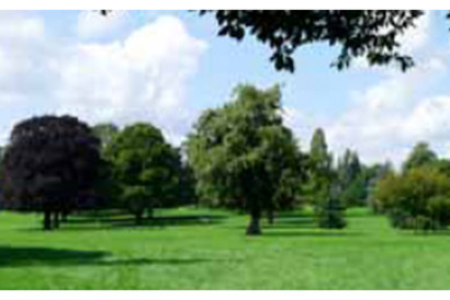 Surrey one of the most sunniest places in the UK