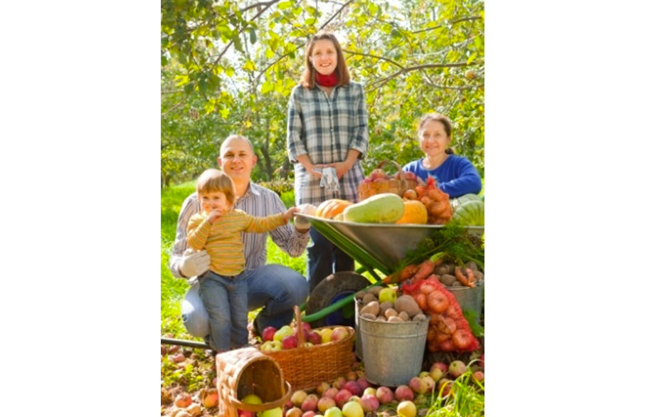 Harvesting and storage – how to preserve your produce this winter…