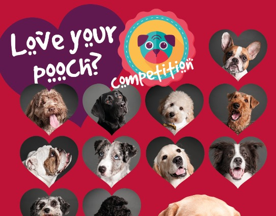 Intercounty's Valentine's competition: Love your pooch