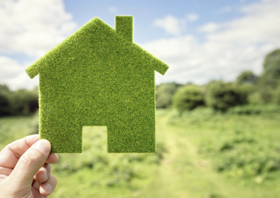 Green living on the rise across Great Britain
