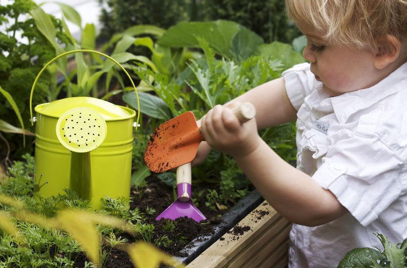 What To Do In The Garden In May...