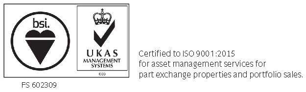 Bsi updated logo for marketng