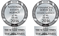 SmallEAA 2015 Financial Services Silver