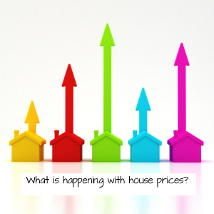 1 house prices high and low